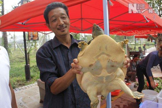 洪泽湖渔民捕获9.7斤野生甲鱼 5000元叫卖