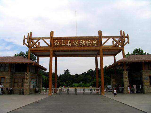 4万张南京红山动物园免费游园券开始发放