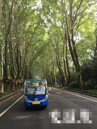 南京中山陵推出新观光环线 众多文艺景点轻松抵达