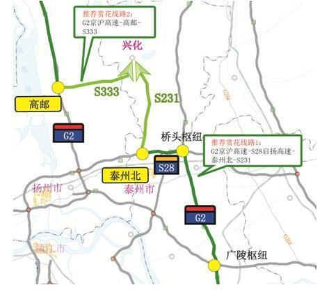 花桥镇315省道规划图