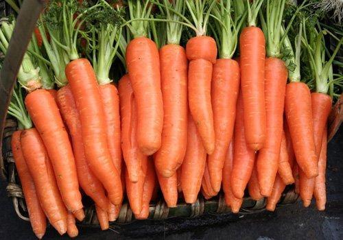 胡萝卜5种做法 好吃又营养