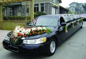 南京频现土豪婚礼 总价超5000万元婚车队伍