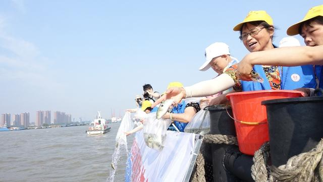 保护长江生态成常态 江阴17年放流鱼苗1.6亿尾