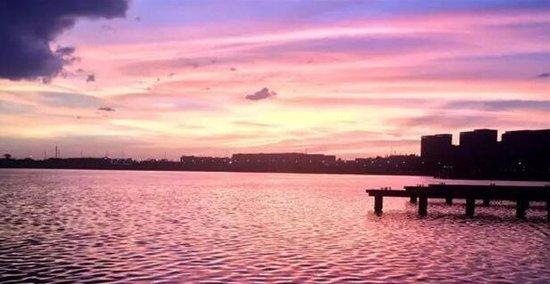 湖海塘公园即将盛放 保集海塘府醇醉回家路