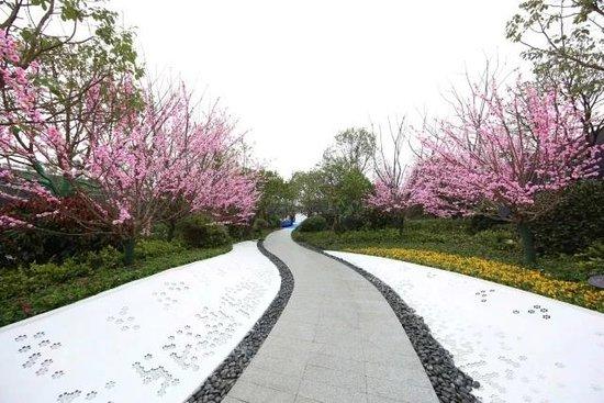美的融信•君兰江山展示中心正式开放