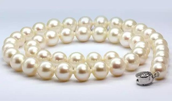 墅者|每一座别墅,是经过时间磨砺的珍珠