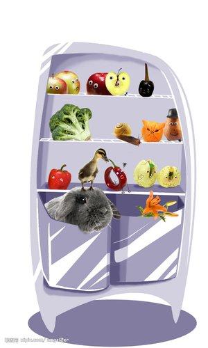 华少作文比赛投稿作品:我家的超级冰箱