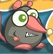 愤怒的老鼠