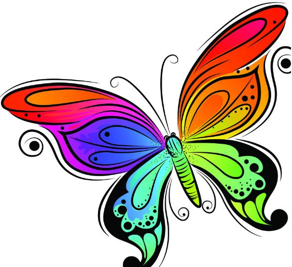 蝶,美丽的生物
