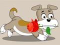 送花使者·小狗跑了多少米
