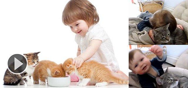 温馨的猫星人陪伴婴儿画面