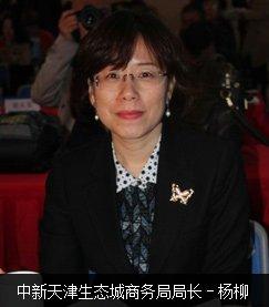 中心天津生态城商务局局长杨柳