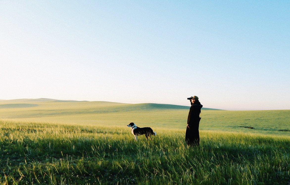 黑鹤首部摄影绘本《蒙古牧羊犬》即将上市:一部记录游牧文化的纸上电影
