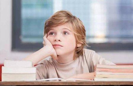 """""""台风爷爷,让我作业飞走!""""这些小学生的诗火了"""