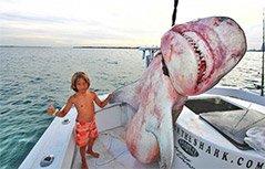 组图:厉害!美国小兄妹跟老爸出海捕鲨鱼