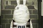 越狱兔前传