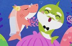 碰碰狐儿歌之鲨鱼宝宝人气系列2 英文版