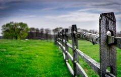 田园景色桌面壁纸