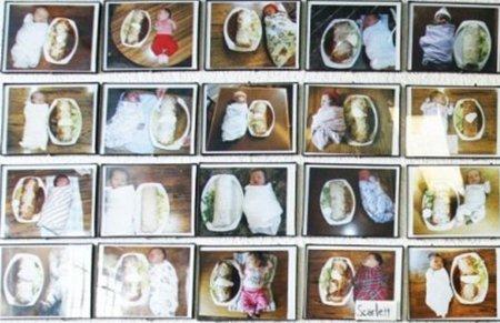 组图:跟婴儿一样大的墨西哥卷饼