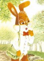 兔子作家·天使羊大夫