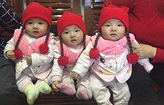 """组图:爷爷牵绳""""溜""""三胞胎引发网友晒娃 原来大家都有三胞胎!"""