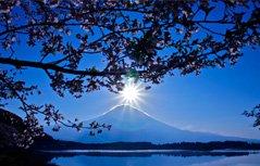 自然美景桌面壁纸