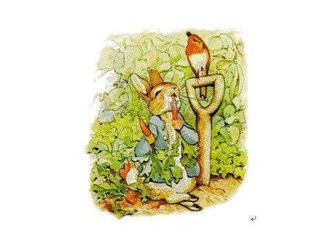 popOut!兔子彼得的故事
