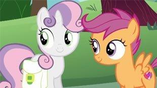 苹果树小马大赛