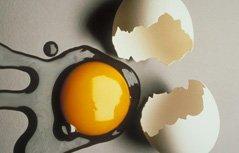 不能吃的蛋