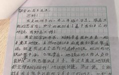 组图:杭州8岁小学生给交通局长写信提公交建议,局长回信感谢