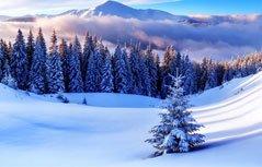 冬季简约桌面壁纸
