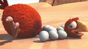 笨鸟奶爸:沙漠里非常缺水的鸟爸