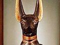组图:神奇! 埃及发现800万条木乃伊狗