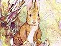 本杰明兔子·英语故事
