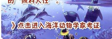 海豚救人之谜