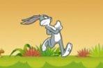 奔跑吧,兔八哥