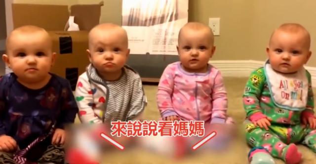 五胞胎学说话,每一只都萌出新花样
