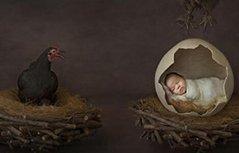 组图:澳新生儿摄影大赛 创意作品尽显萌娃百态