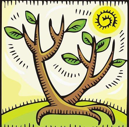 (网友投稿)假如我是一棵树