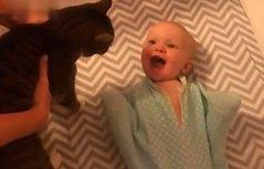 小宝宝遇到喵星人