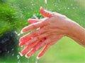 你会洗手吗
