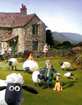 小羊考考答案