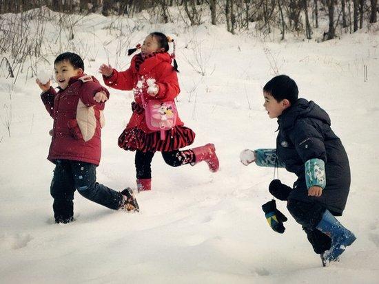 (网友投稿)打雪仗