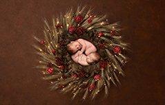 英国摄影师拍圣诞主题新生儿照 萌到不行!