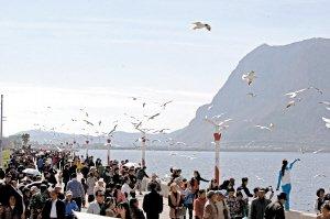 今年前11月昆明旅游揽金1442亿 接待游客1.2亿人次