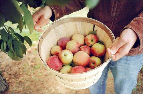 苹果泥面膜