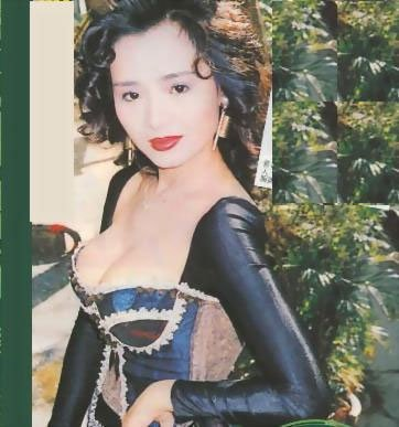 叶子楣在上世纪80年代末期以惊人丰胸走红影坛,曾在1991年为自己一对