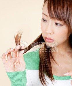 白头发真的拔一根长十根吗?
