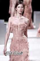 范冰冰穿着Elie Saab 2011春夏系列的裸色刺绣长裙