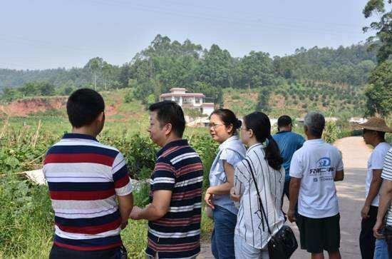 张彤调研时强调:加强环境保护 提升综合效益